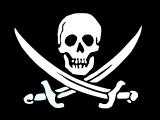 Пермские программисты против компьютерных пиратов