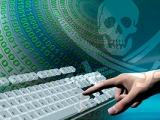 Как сделать пиратский контент легальным: советы бывалых